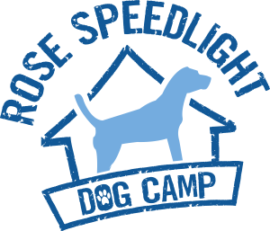 Rose Speedlight Dog Camp